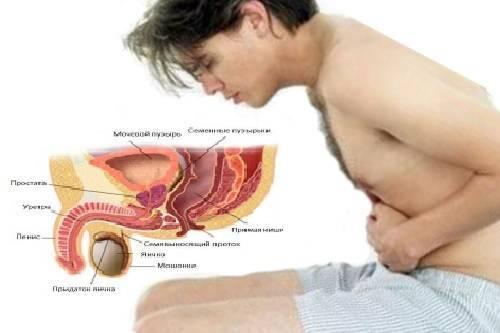 Болит в паху у ребенка — причины, описание симптомов
