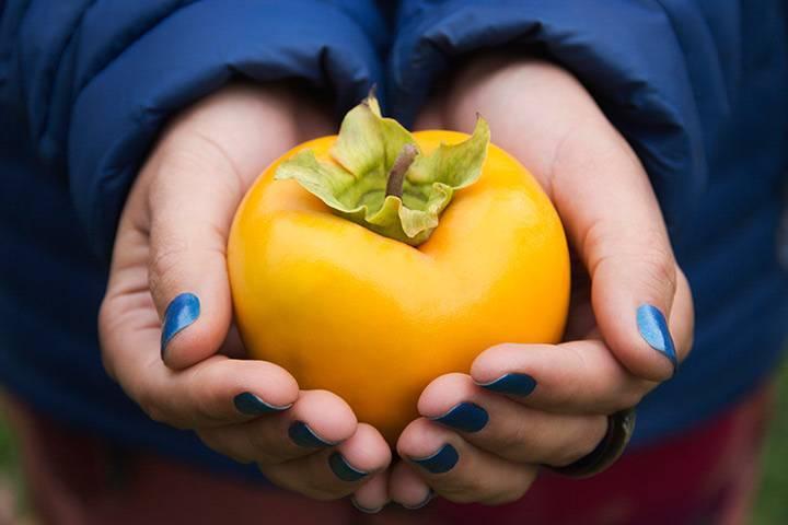 Хурма - можно хурму ребенку 1 год - запись пользователя юлия-мама жу-жу (jdczyrf) в сообществе питание новорожденного в категории фрукты и овощи - babyblog.ru