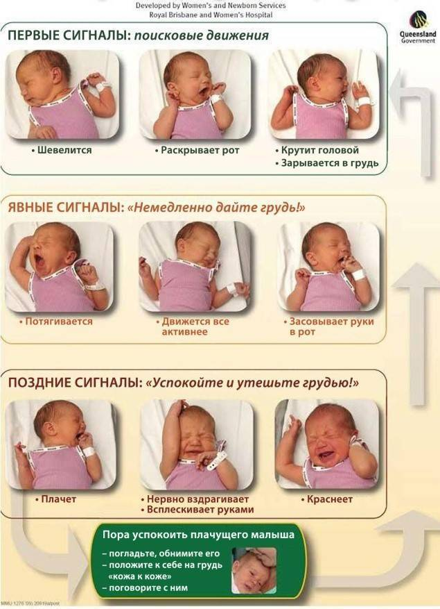 Сном младенца... новорожденный