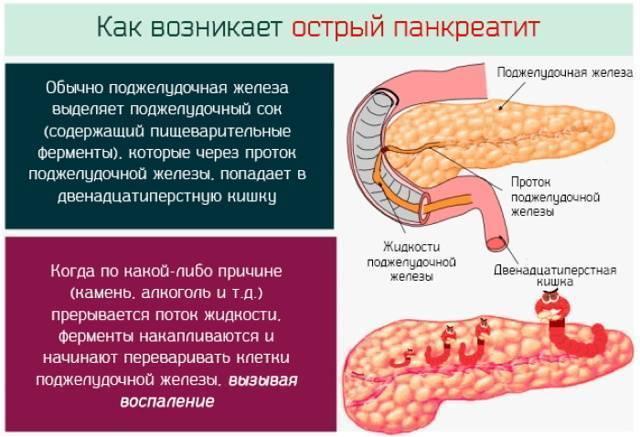 Детрит в кале у ребенка: показатели нормы, значение малого и большого количества