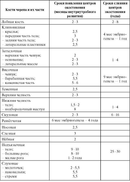 Объем головы у детей: формулы, таблица по возрасту, по месяцам до года у новорожденного ребенка, в 2, 3, 4, 5 лет. как измерить, какой должен быть