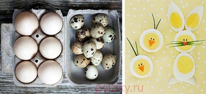 Когда детям можно давать перепелиные яйца и сколько их варить