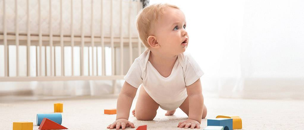 Как прописать новорождённого или ребёнка в квартиру