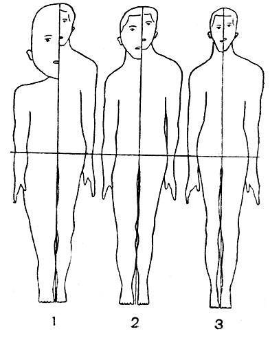 Сравнение скелета взрослого и новорожденного человека. костная система ребенка. грудная клетка ребенка