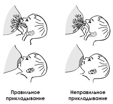 Позы для кормления грудью (с фото)   позы при грудном вскармливание картинки