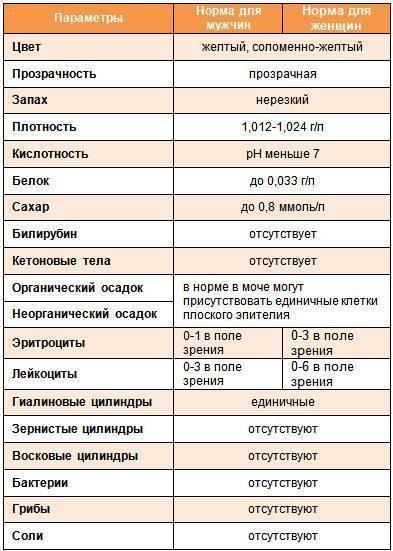 Анализ мочи у ребенка: расшифровка результатов, норма, таблица