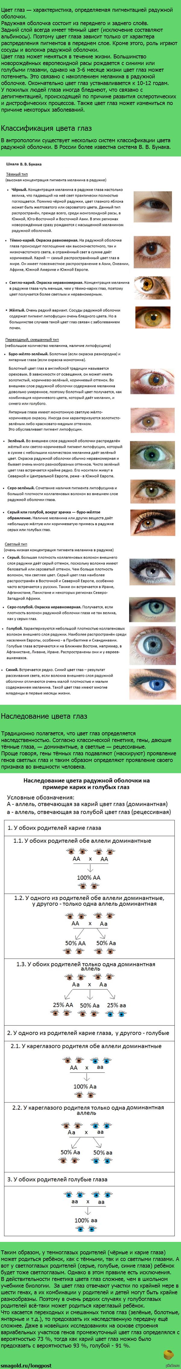 Когда меняется цвет глаз у ребенка: во сколько месяцев, отзывы