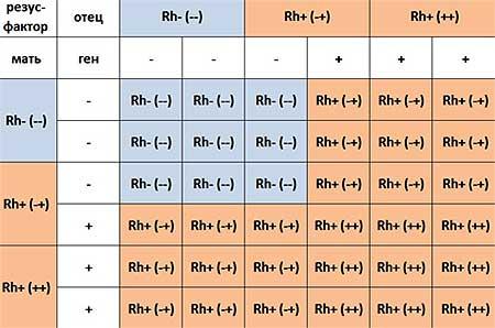Группа крови детей и родителей: таблица