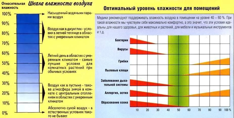Про влажность воздуха в квартире - какая влажность должна быть в квартире - запись пользователя nissya (nissya) в сообществе эко - мама в категории всё о нашей беременности - babyblog.ru