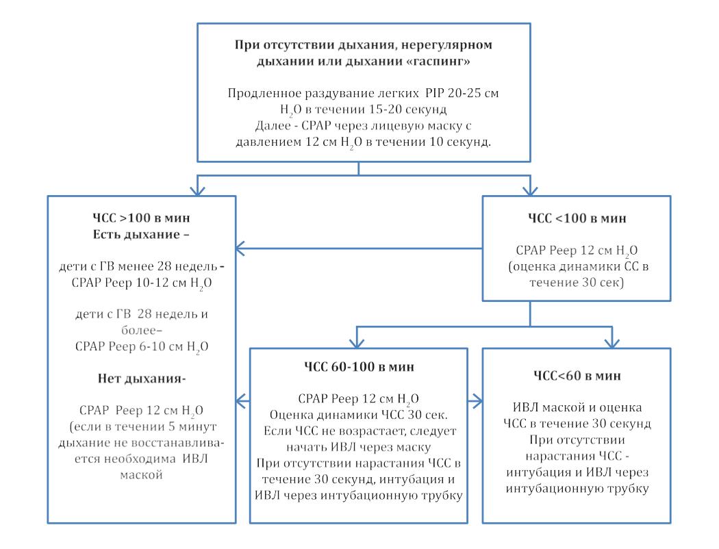 Этапы и методы реанимации новорожденных в родзале
