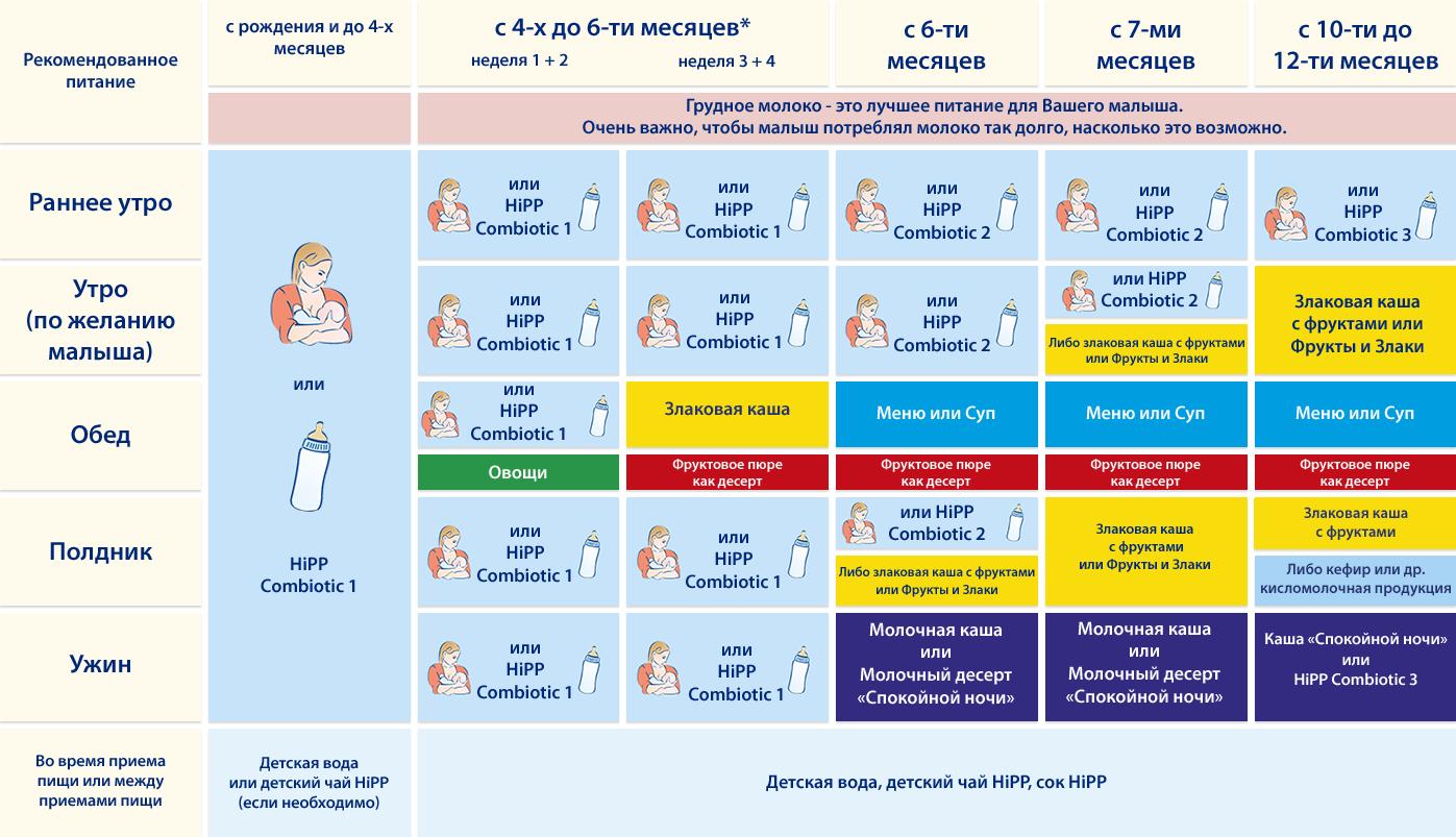 Питание ребенка в 7 месяцев: меню, разрешенные продукты / mama66.ru