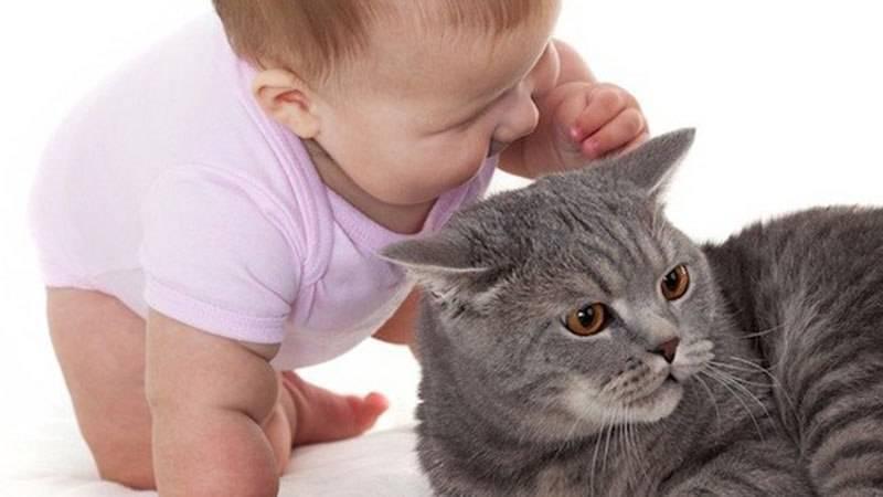 Пищевая аллергия у ребенка при гв. научите, подскажите - запись пользователя наталья (id1482721) в сообществе здоровье новорожденных в категории аллергия - babyblog.ru