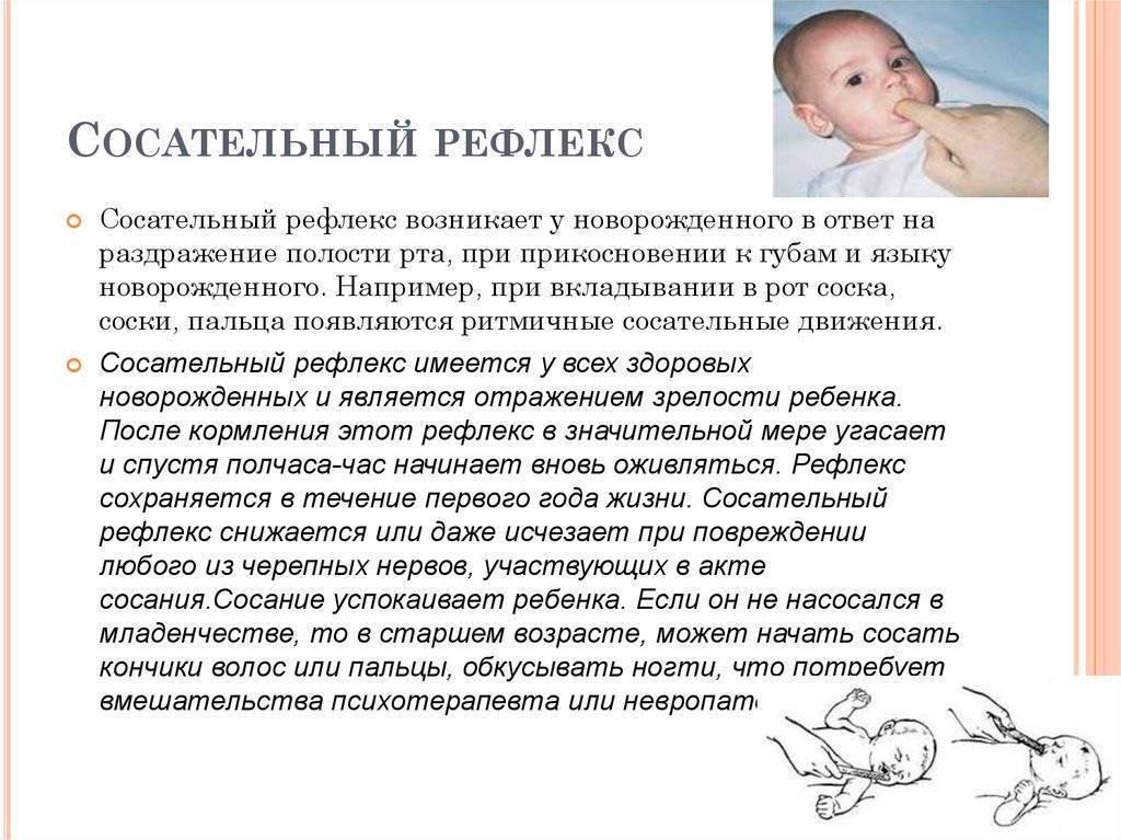 Рефлексы новорожденных — классификация и методика исследования