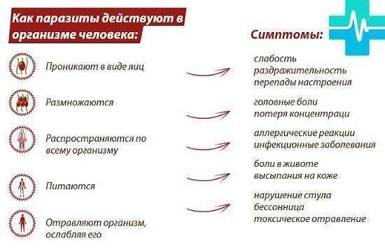 Как определить глисты у ребенка по калу
