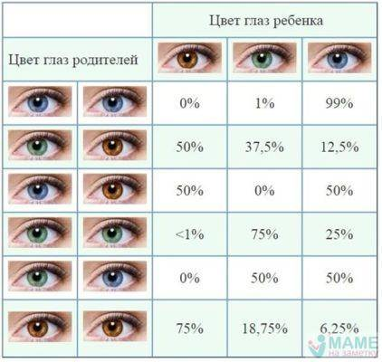 Цвет глаз ребенка - генетика - расшифровка анализов онлайн