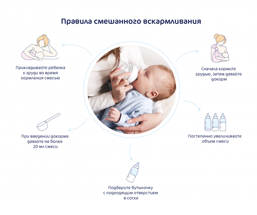 Все о кормлении новорожденных в первые дни жизни. график кормления грудью и смесью