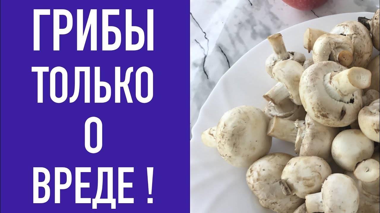 С какого возраста можно давать ребенку грибы: советы, отравление