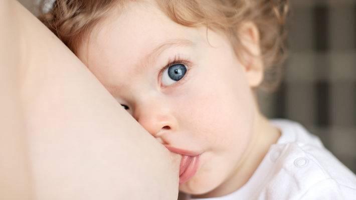 Как отучить ребенка от грудного вскармливания? - запись пользователя светлана (id2125463) в дневнике - babyblog.ru