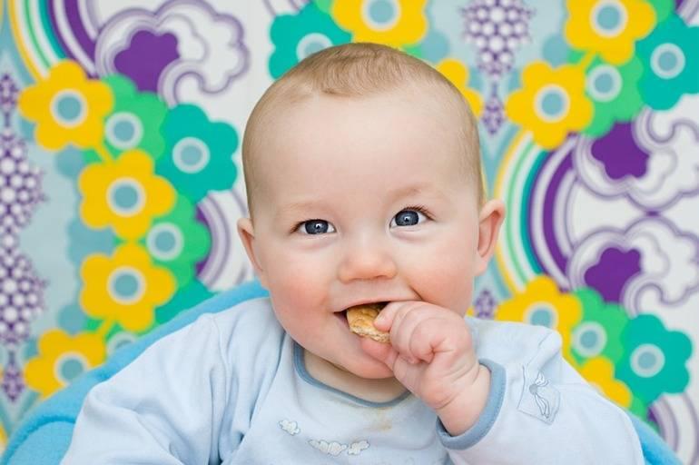 Печенье для малышей до года — как вводить в прикорм
