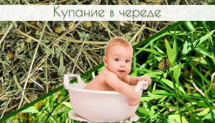 Как заварить череду,ромашку для купания малыша
