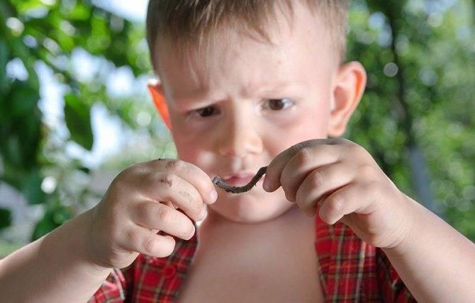 Глисты у детей: самые важные симптомы и анализы. паразиты в организме: откуда? гельминты у детей