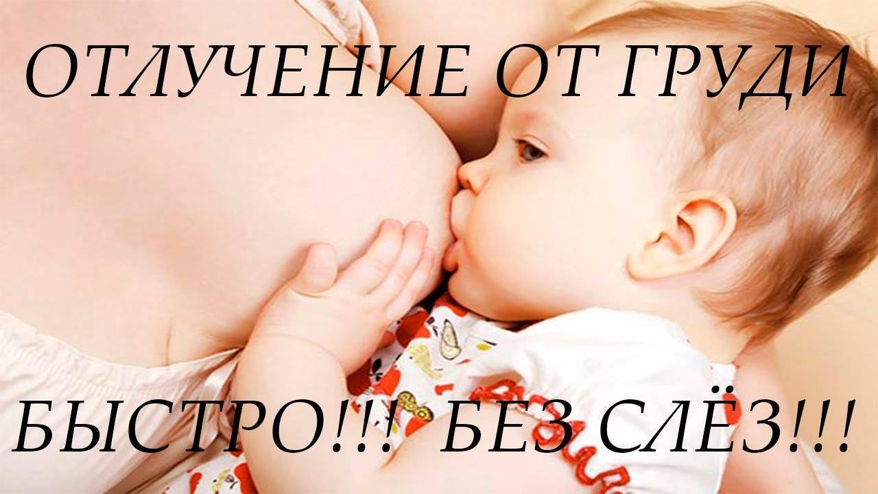 Как завершить грудное кормление: отучаем ребенка от груди в год