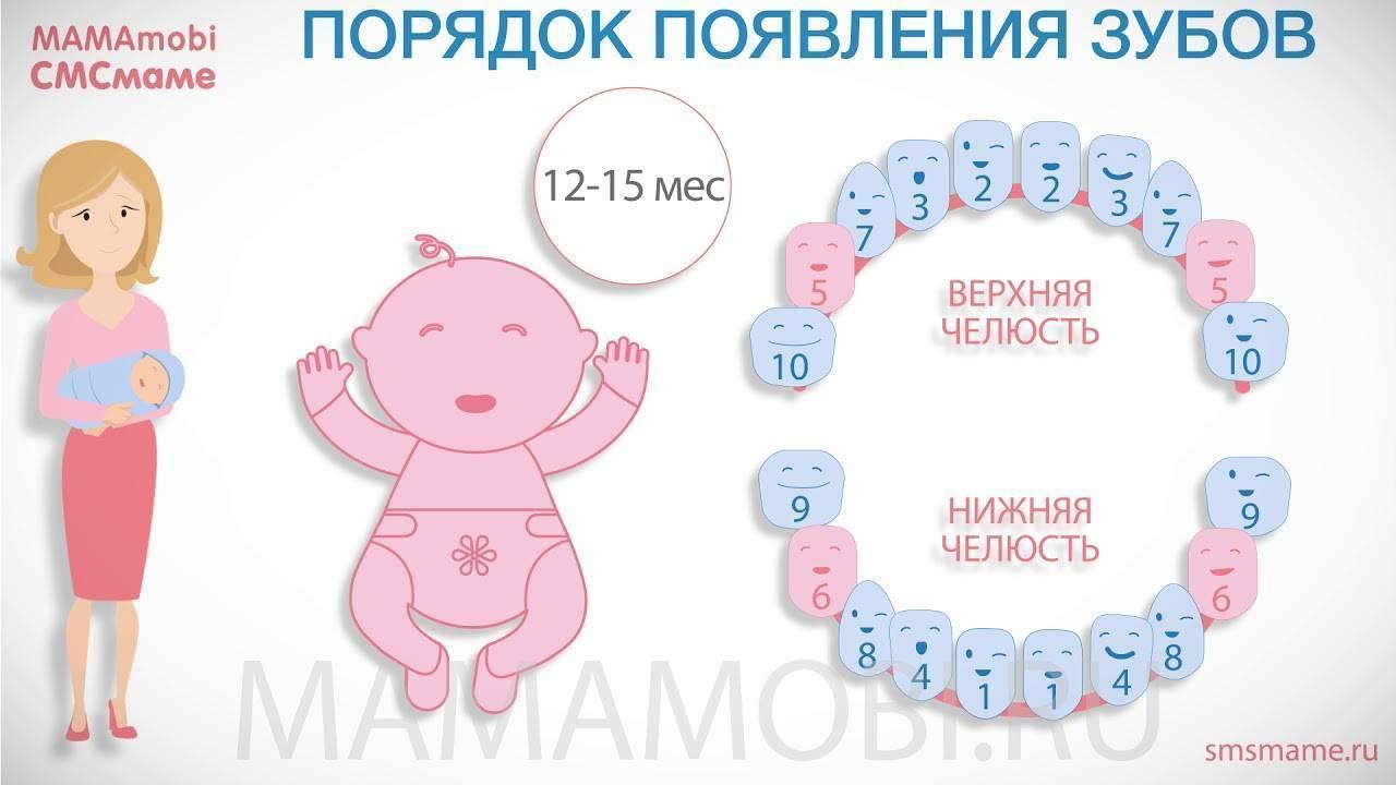 Первые зубы у младенцев — симптомы, порядок прорезывания и когда именно начинают резаться зубки (85 фото)