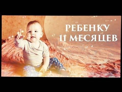 Что должен уметь ребенок в 11 месяцев. развитие ребенка в 11 месяцев