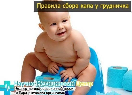 Расшифровка копрограммы: нормы и причины отклонений анализа кала ребенка