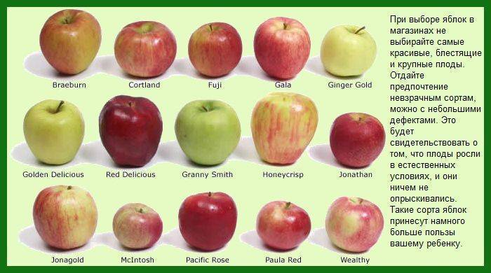 Запеченное яблоко в духовке для ребенка до года