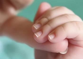 Ногти новорожденного. как подстричь ногти ребенку, как за ними ухаживать - календарь развития ребенка