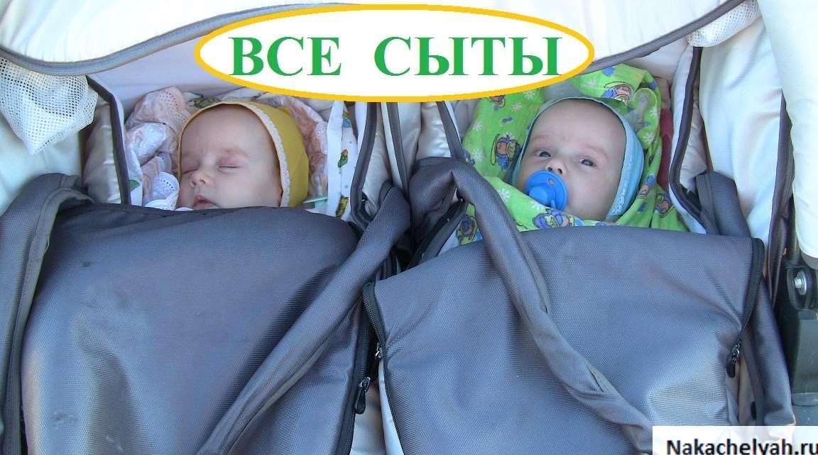 Двойня и гв по требованию - запись пользователя вероника (id1472849) в сообществе двойняшки в категории кормление двойняшек. идеи. рецепты. советы. - babyblog.ru