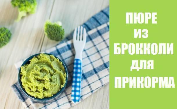 Готовим пюре из брокколи для прикорма грудничку: правила выбора, обработки и приготовления