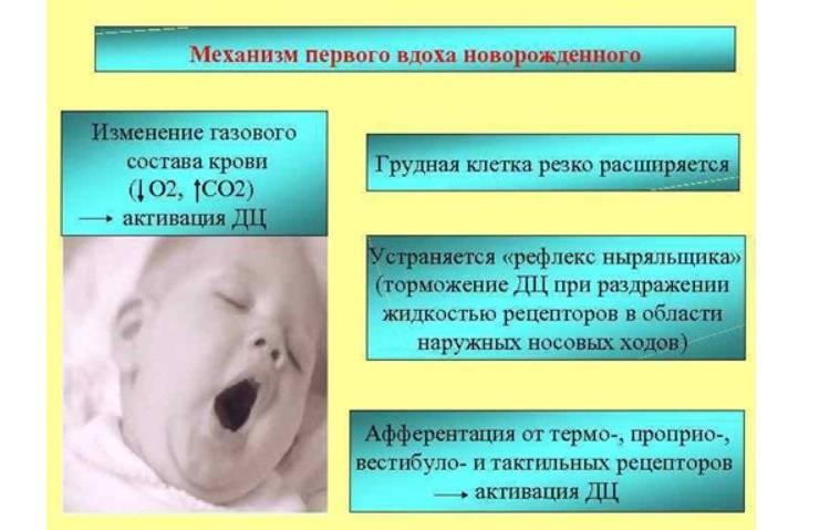 Овальное окно 9 лет может ли закрыться. если у ребенка обнаружили открытое овальное окно в сердце