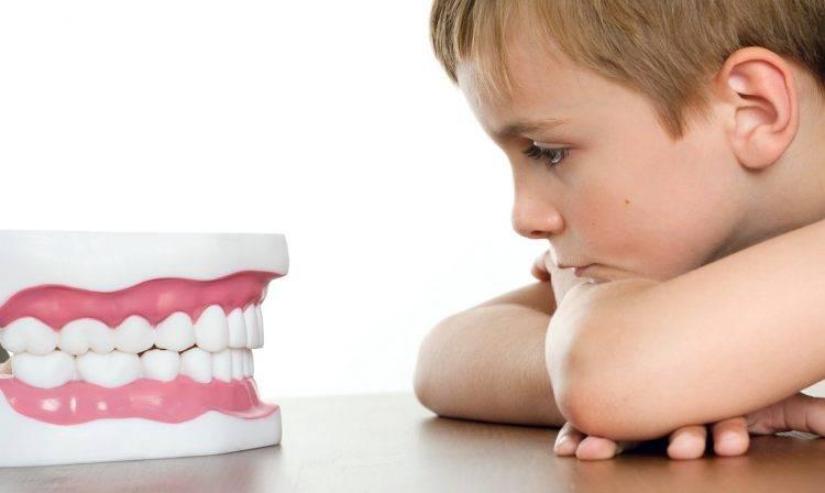 Cколько молочных зубов у детей должно быть?