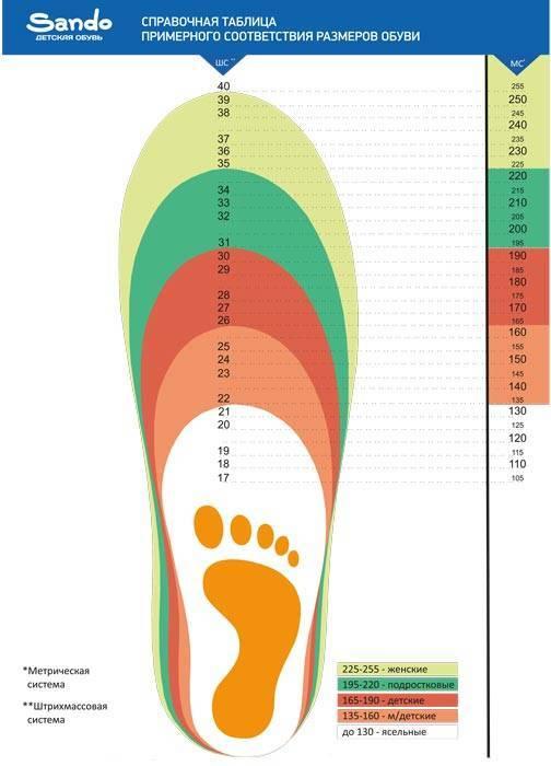 Как подобрать размер обуви ребенку — таблицы (сша, европа, россия)