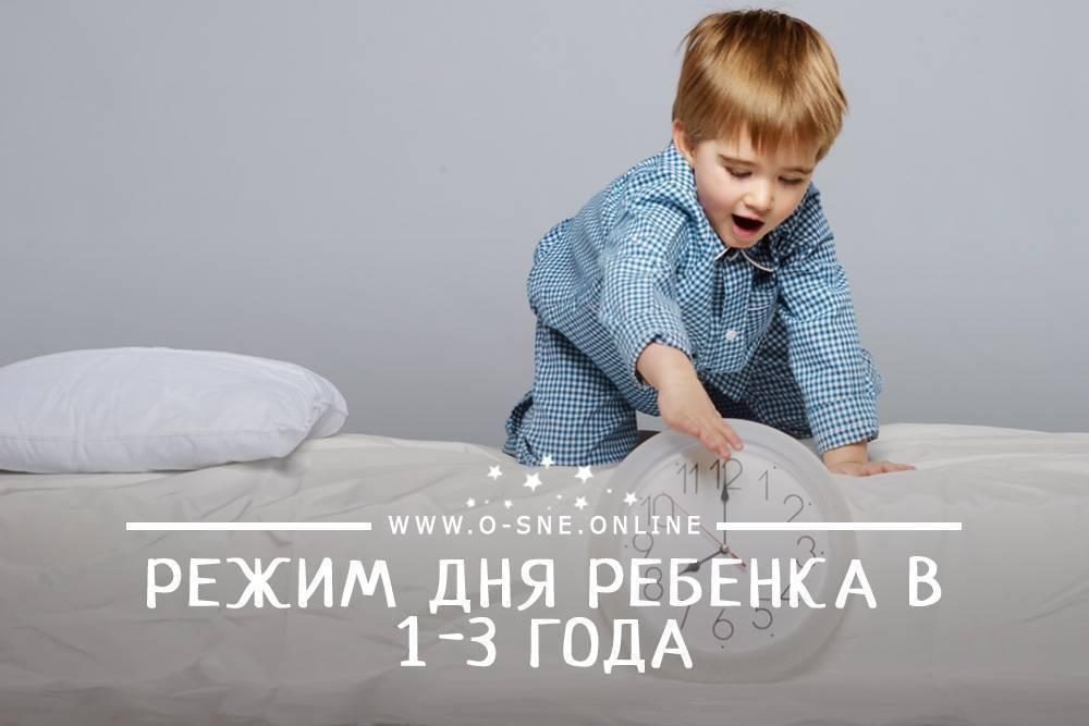 День годовалого ребенка: важность распорядка и примерный режим в 1 год