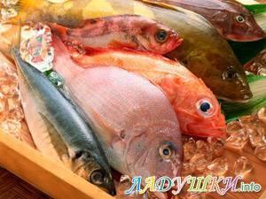 """Блюда из рыбы: """"рыбный стол"""". питание детей до года.   как приготовить рыбу ребенку до года   метки: треск"""