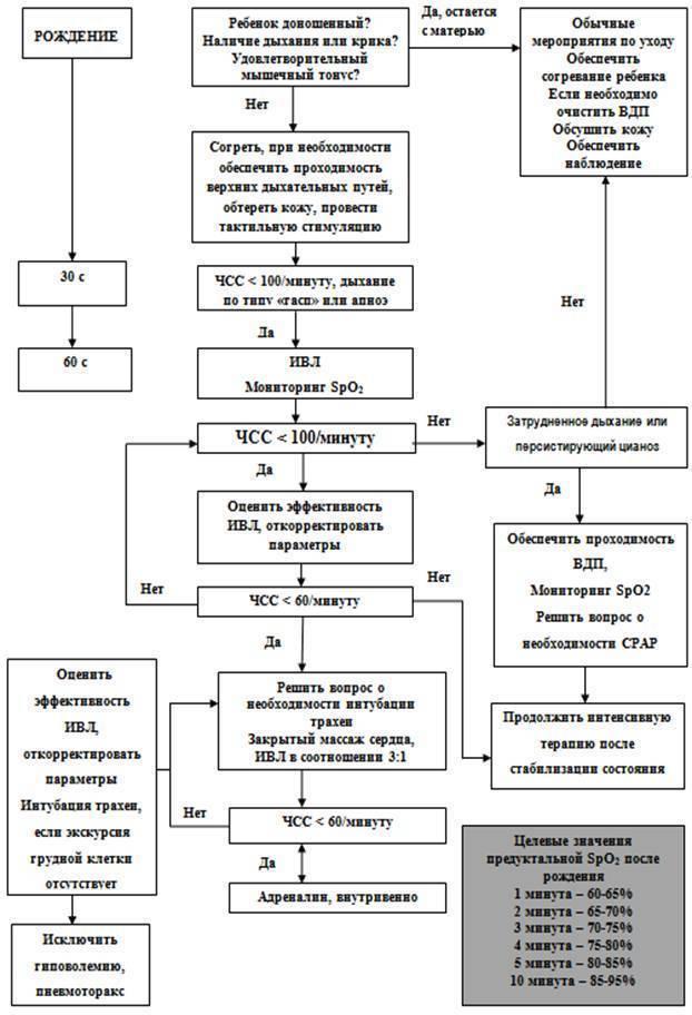 Реанимация новорожденных: первичная, этапы, интенсивная терапия в родзале