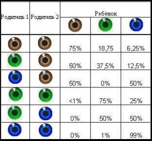 Генетика для родителей: 7 особенностей, которые передаются по наследству