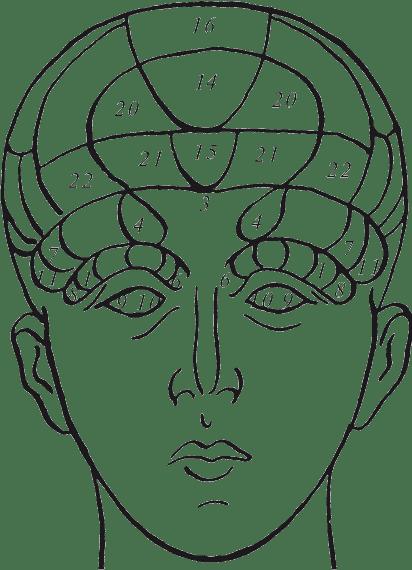 Если у ребенка большая голова — основные причины