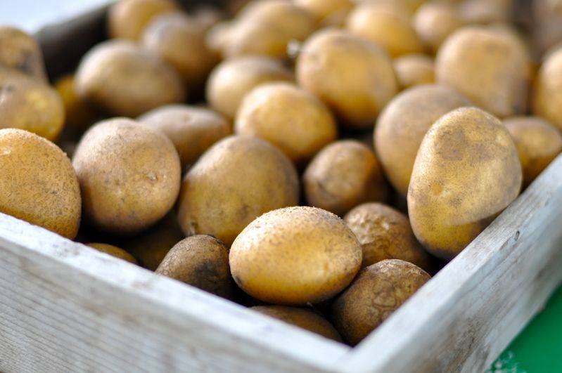 Когда и как вводить прикорм  при грудном вскармливании: правила, продукты и маленькие хитрости