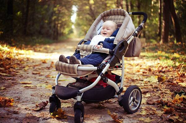 Легкая коляска-люлька на зиму, посоветуйте, пожалуйста! - коляска люлька на зиму - запись пользователя анастасия (id1511367) в сообществе выбор товаров в категории коляски (только вопросы и выбор) - babyblog.ru