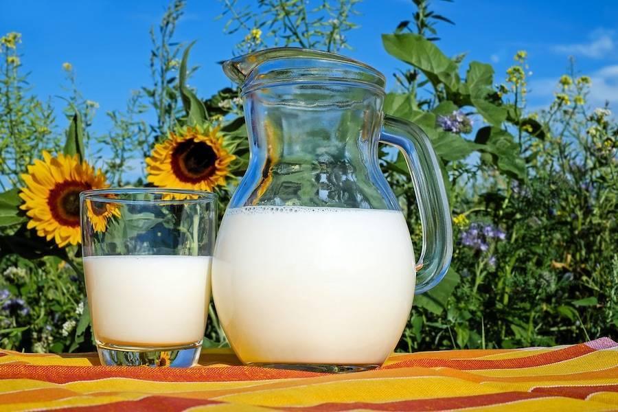 Козье молоко - козье молоко детям до года - запись пользователя анастасия (lisaalisa_86) в сообществе питание новорожденного в категории молочная кухня и всё, что связано с молочком - babyblog.ru
