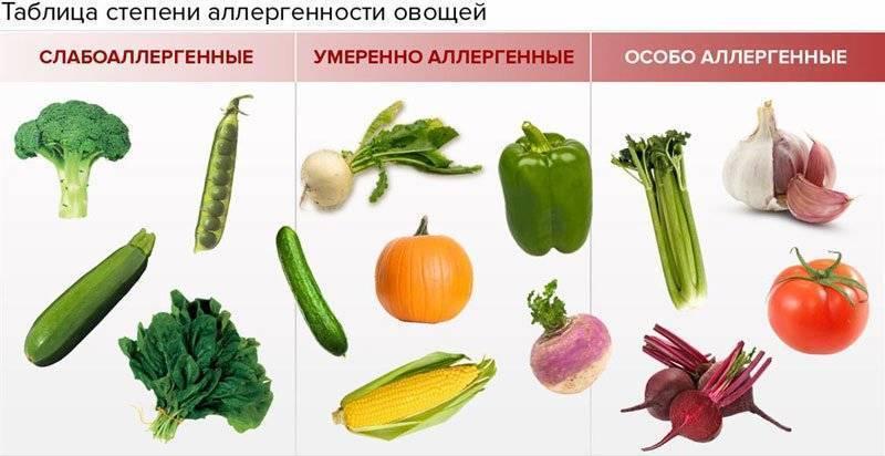 В каком возрасте можно начать давать грудничку овощное и фруктовое пюре