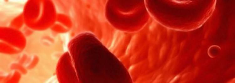 Геморрагическая болезнь у новорожденных