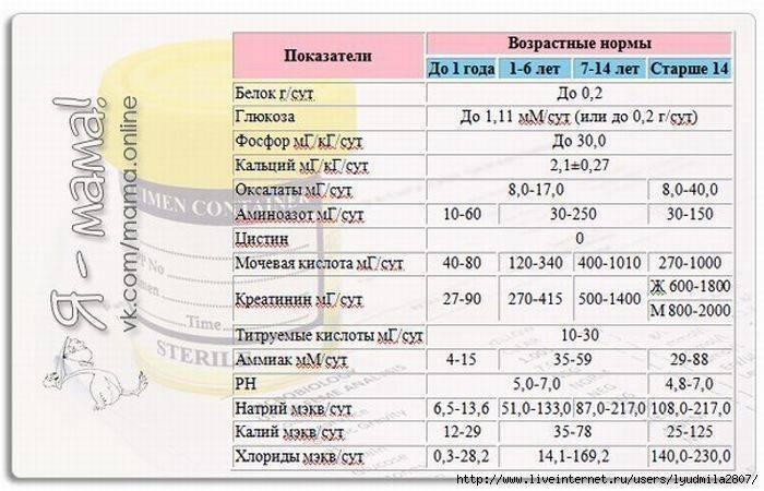 Расшифровка биохимического анализа крови для детей до года