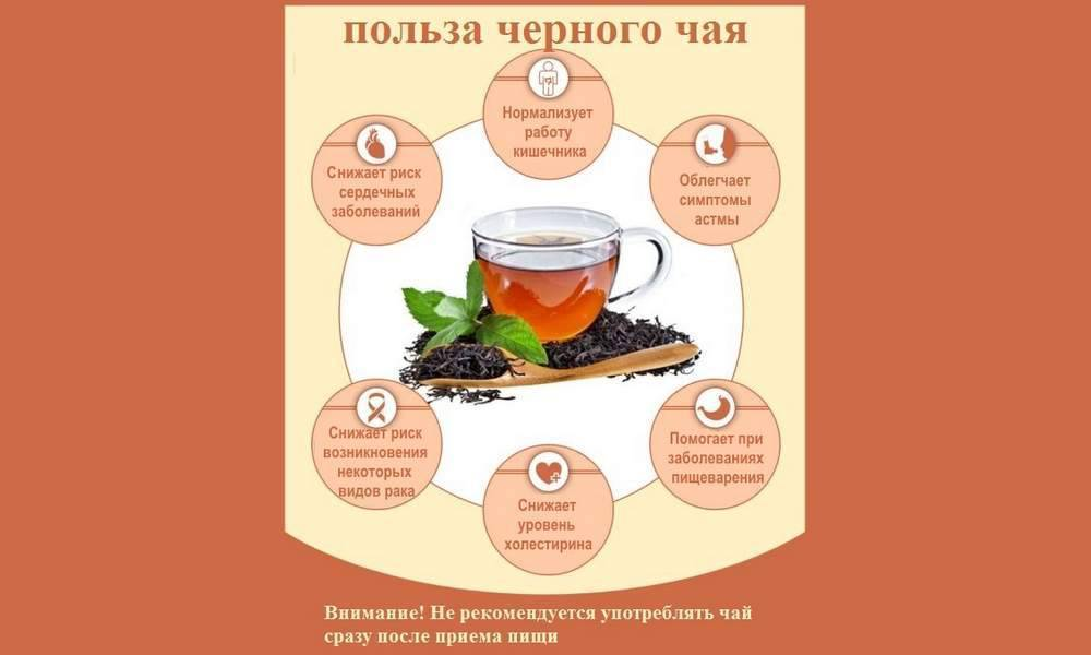 Когда можно давать ребенку чай: черный и другие виды