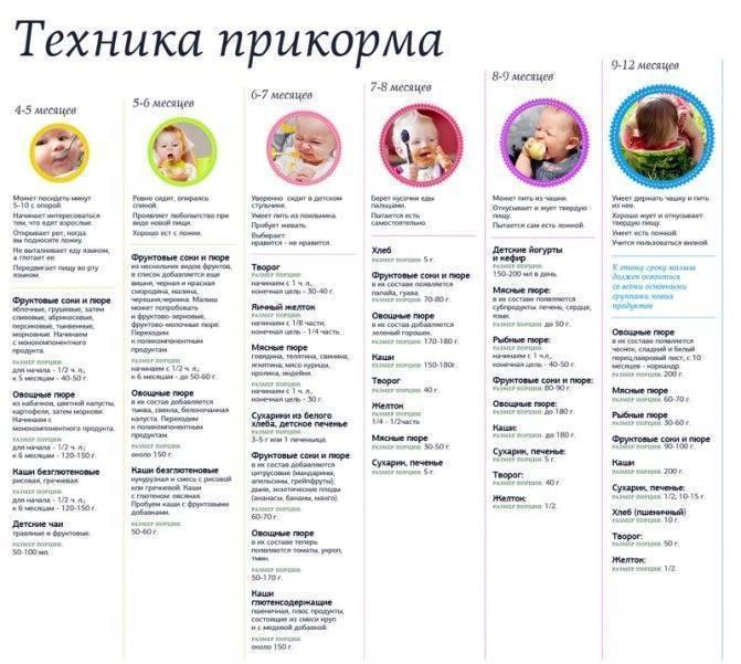 Прикорм в 7 месяцев: правила питания и меню на неделю