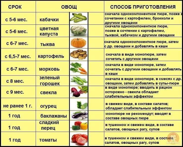 Как вводить прикорм в 6 месяцев